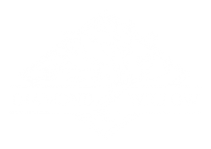 Diamond Willow logo white